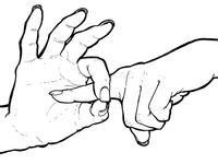 Sign Language Sex 2